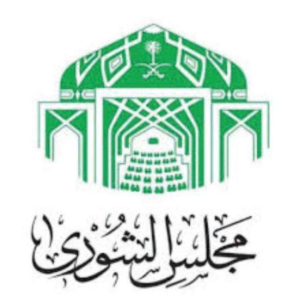 الصناعات العسكرية والأمن السيبراني تحت قبة «الشورى»