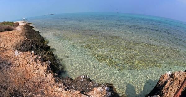 سواحل المملكة.. وجهات سياحية بطول 3400 كيلومتر شرقًا وغربًا