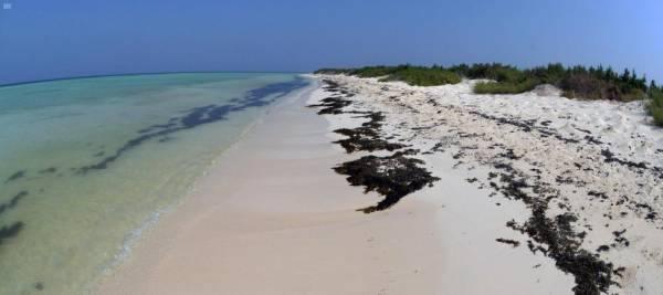 البرك .. شواطئ الرمال البيضاء والجزر البكر