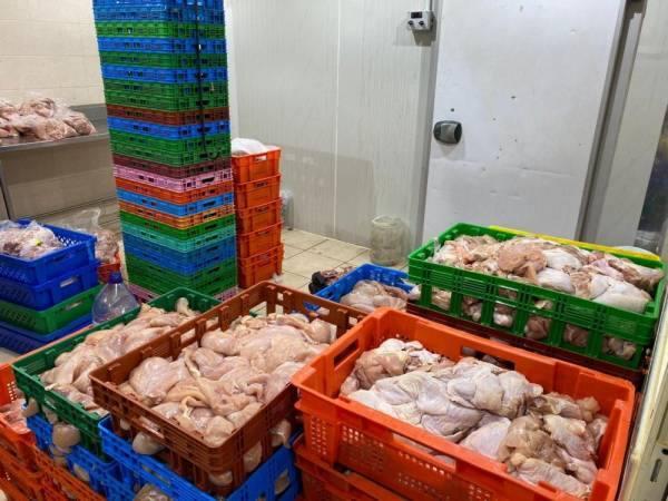بلدية القطيف: إغلاق معمل مخالف وإتلاف 3 آلاف كيلو دجاج فاسد