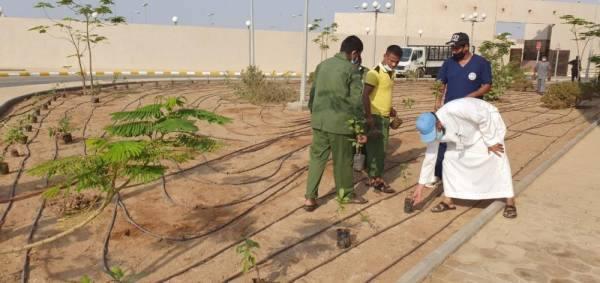 مبادرة لغرس 2020 شجرة في جدة احتفاء باليوم الوطني