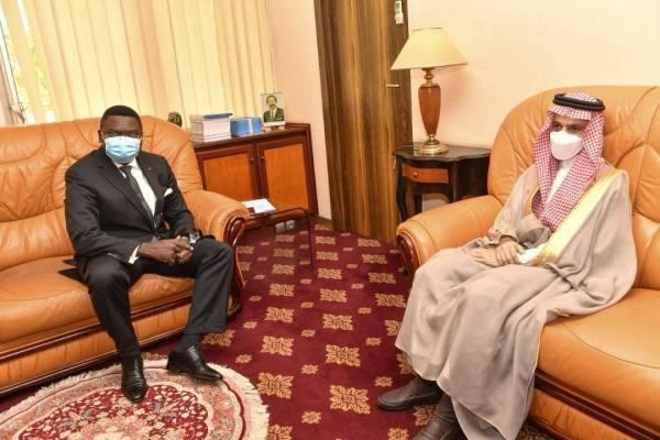 وزير الخارجية يبحث سبل التعاون  مع وزير العلاقات الخارجية الكاميروني