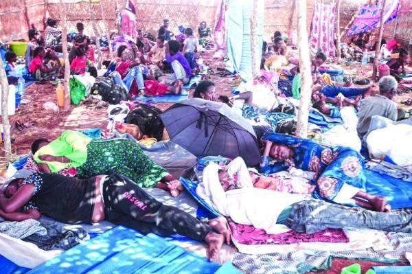 وضع ماساوى يعيشه اللاجئون الإثيوبيون فى المخيمات بالسودان