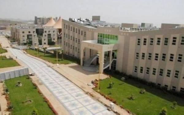 جامعة جدة تطلق برنامج
