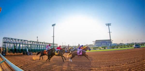 مهرجان كؤوس الملوك لسباقات الخيل يقدم للمشاركين 5.9 ملايين ريال
