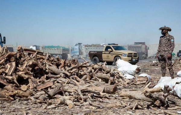 القوات الخاصة للأمن البيئي تضبط أكثر من 120 طناً من الحطب المعروض للبيع في الرياض