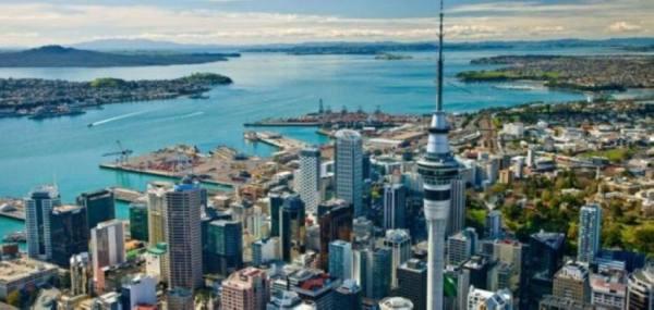 بؤرة جديدة في نيوزيلندا.. و»الرقميون الرحل» يخطفون الأضواء