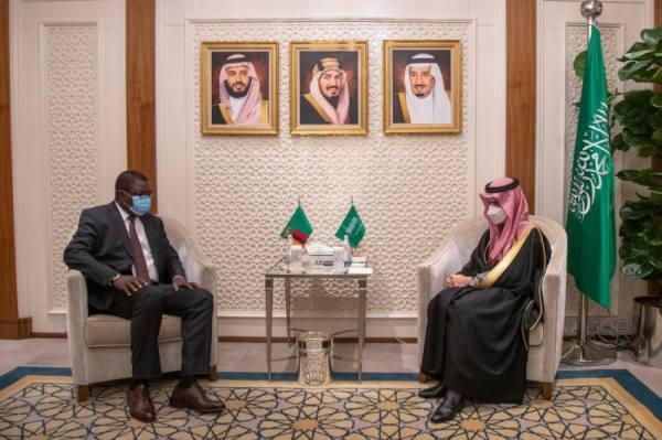 وزير الخارجية يبحث مع نظيره الزامبي سبل دعم العلاقات الثنائية
