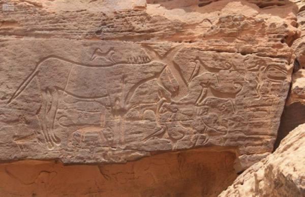 السناني : المملكة تحتضن 1400 موقع للرسوم الصخرية