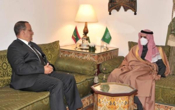 وزير الخارجية يبحث مع عدد من نظرائه العرب المستجدات الإقليمية والدولية
