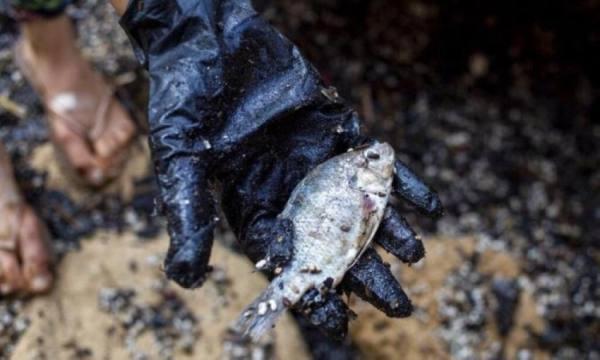 إسرائيل: حادثة التلوث قبالة سواحلنا عمل إرهابي إيراني