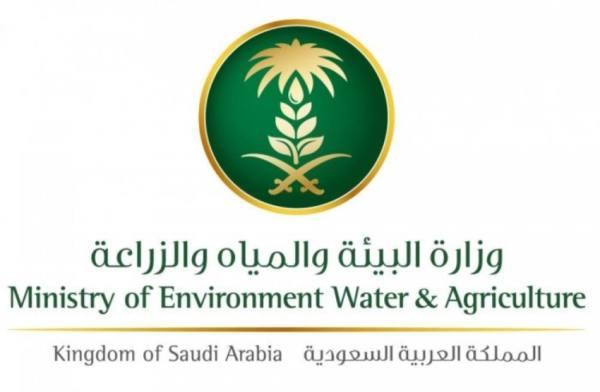 بدء تطبيق اللائحة التنفيذية للتفتيش والتدقيق البيئي