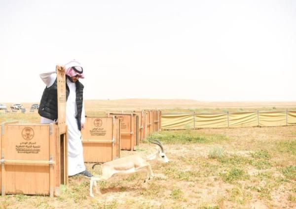 تركي بن محمد: القيادة تولي البيئة والمحميات الطبيعية اهتماماً كبيراً