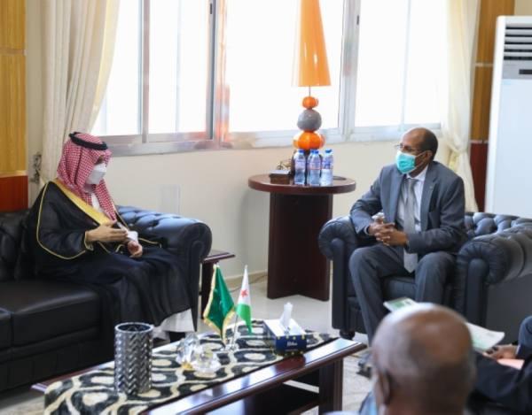 وزير الخارجية يبحث مع نظيره الجيبوتي الموضوعات المشتركة