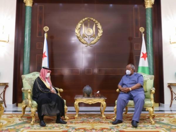 وزير الخارجية يستعرض مع الرئيس الجيبوتي سبل تعزيز العلاقات الثنائية