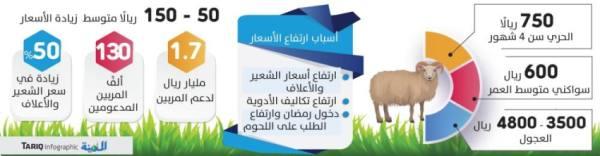 150 ريالا زيادة بأسعار المواشي لقدوم رمضان وارتفاع الأعلاف