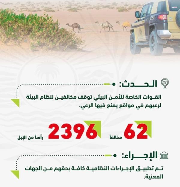 قوات الأمن البيئي توقف 62 مخالفًا لارتكابهم مخالفات رعي