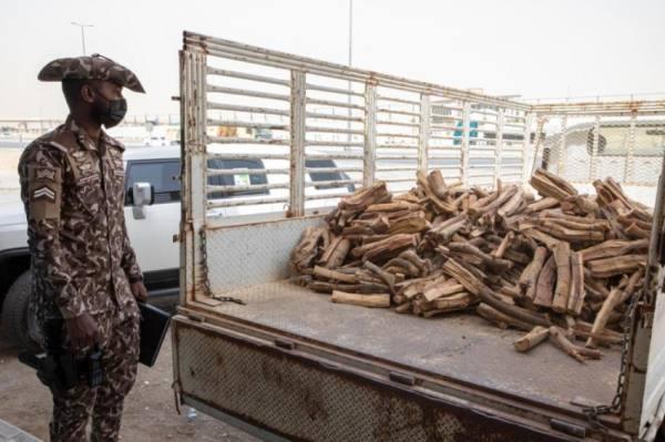 الأمن البيئي يضبط مخالفين يبيعون حطبًا محليًا بالرياض