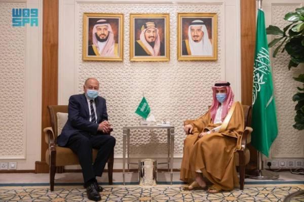وزير الخارجية يستعرض مع أبوالغيط الأوضاع على الساحتين العربية والدولية