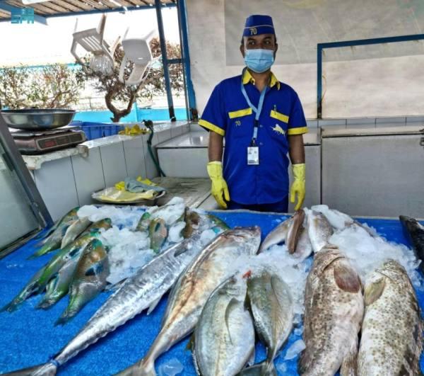 سوق السمك بجدة يستقبل 1.071 طن أسماك خلال الربع الأول من 2021
