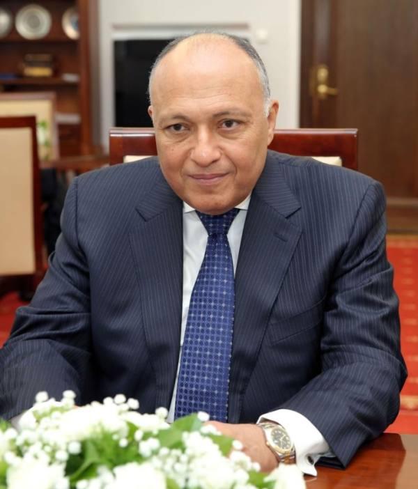القاهرة : المبادرة السعودية هي