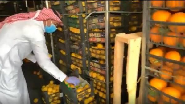 أمانة الشرقية تضبط 3,5 أطنان من البرتقال والليمون الفاسد بالدمام
