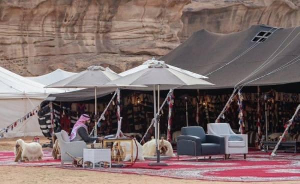 ديار البدو.. صورة خير من ألف كلمة