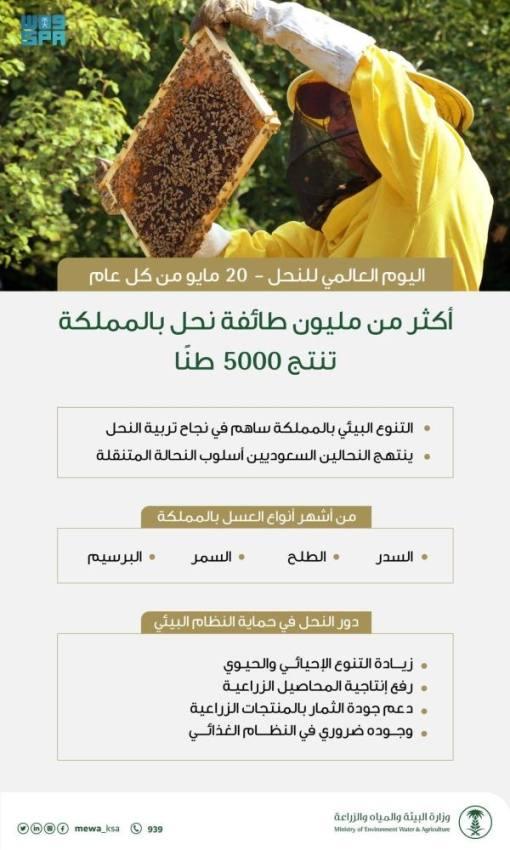 المملكة تشارك المجتمع الدولي باليوم العالمي للنحل