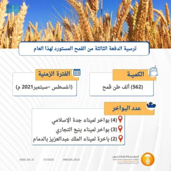 مؤسسة الحبوب تنهي ترسية 562 ألف طن من القمح المستورد