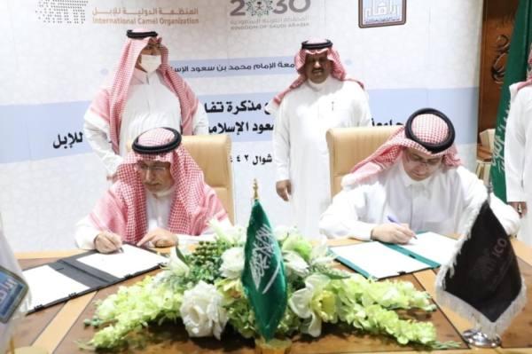 تعاون بين جامعة الإمام والمنظمة الدولية للإبل لدعم القطاع إعلاميًّا وثقافيًّا