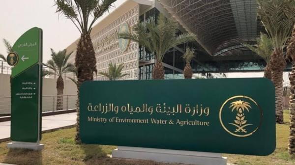 مبادرات سعودية لاستعادة النظام البيئي ومواجهة التصحر