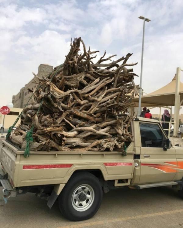 ضبط مواطنَين يبيعان الحطب المحلي في مكة