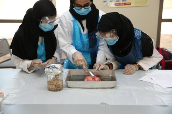 6 آلاف من طلبة المملكة يتحولون إلى أطباء ومهندسين وعلماء في 23 مجالاً لـ21 يوماً