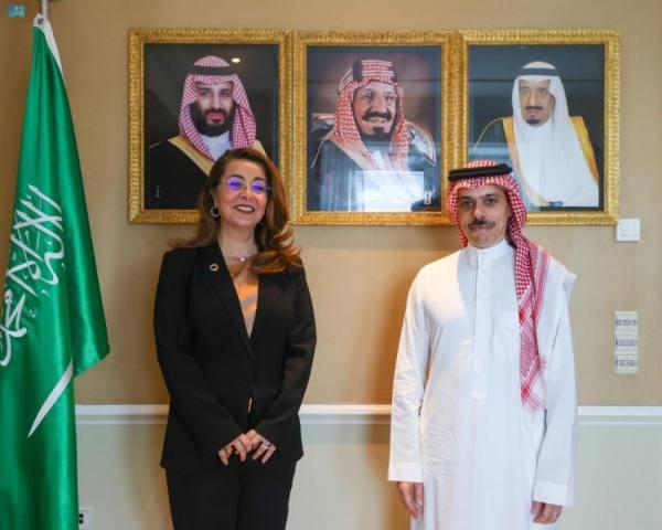 وزير الخارجية يناقش مع مسؤولة أممية تعزيز التنسيق المشترك
