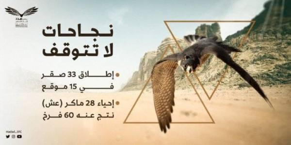 30 متطوعًا سعوديًا يشاركون في إنقاذ سلالات الصقور النادرة من الانقراض