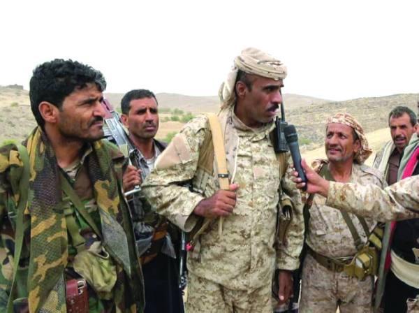 العميد الحميقاني لـ« المدينة »: سقوط عشرات الحوثيين  « أسرى حرب »