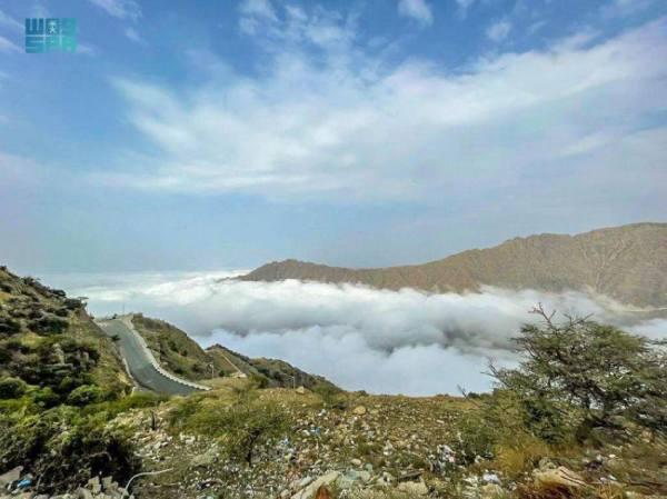 أحزمة الضباب على قمم جبال  الباحة
