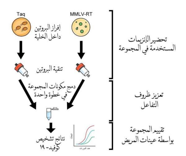 مجموعة اختبار PCR تنتجها