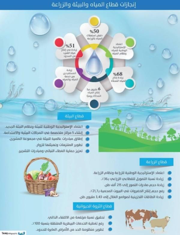 القطاع الزراعي .. 5 محاور للترشيد والاكتفاء الذاتي وزيادة الإنتاج