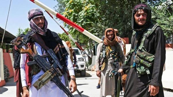 طالبان تقتل شقيق