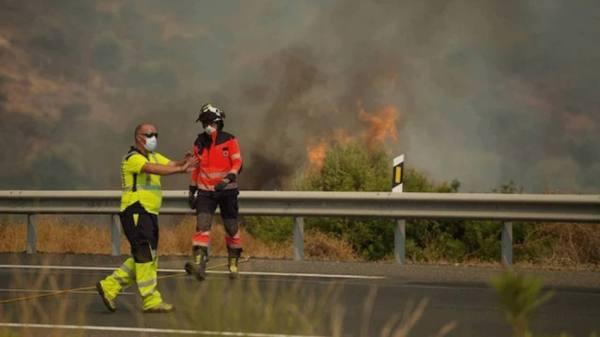 إسبانيا تسيطر على حريق غابات ملقا