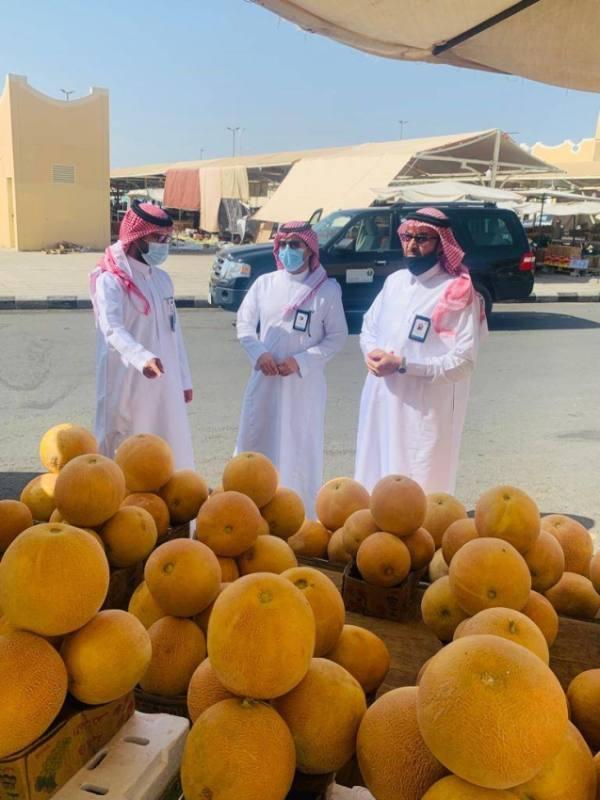 46 موقع للنفع العام في محافظة الطائف تحت إشراف البيئة بعد نقلها من أمانة الطائف