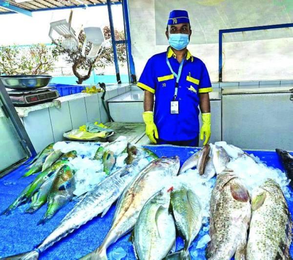 السمك يتحدث تاريخاً في «بنقلة» جدة